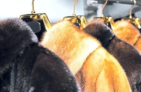 Чистка меховых изделий в домашних условиях домашний