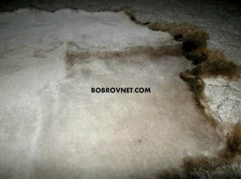 Покраска меховых изделий в домашних условиях домашний
